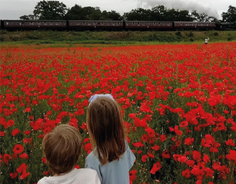 Thank you to Anna Withers for the wonderful photo of her children and the poppies.